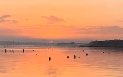 2019-2020 Rodman Reservoir Drawdown Fishing for Trophy Largemouth Bass